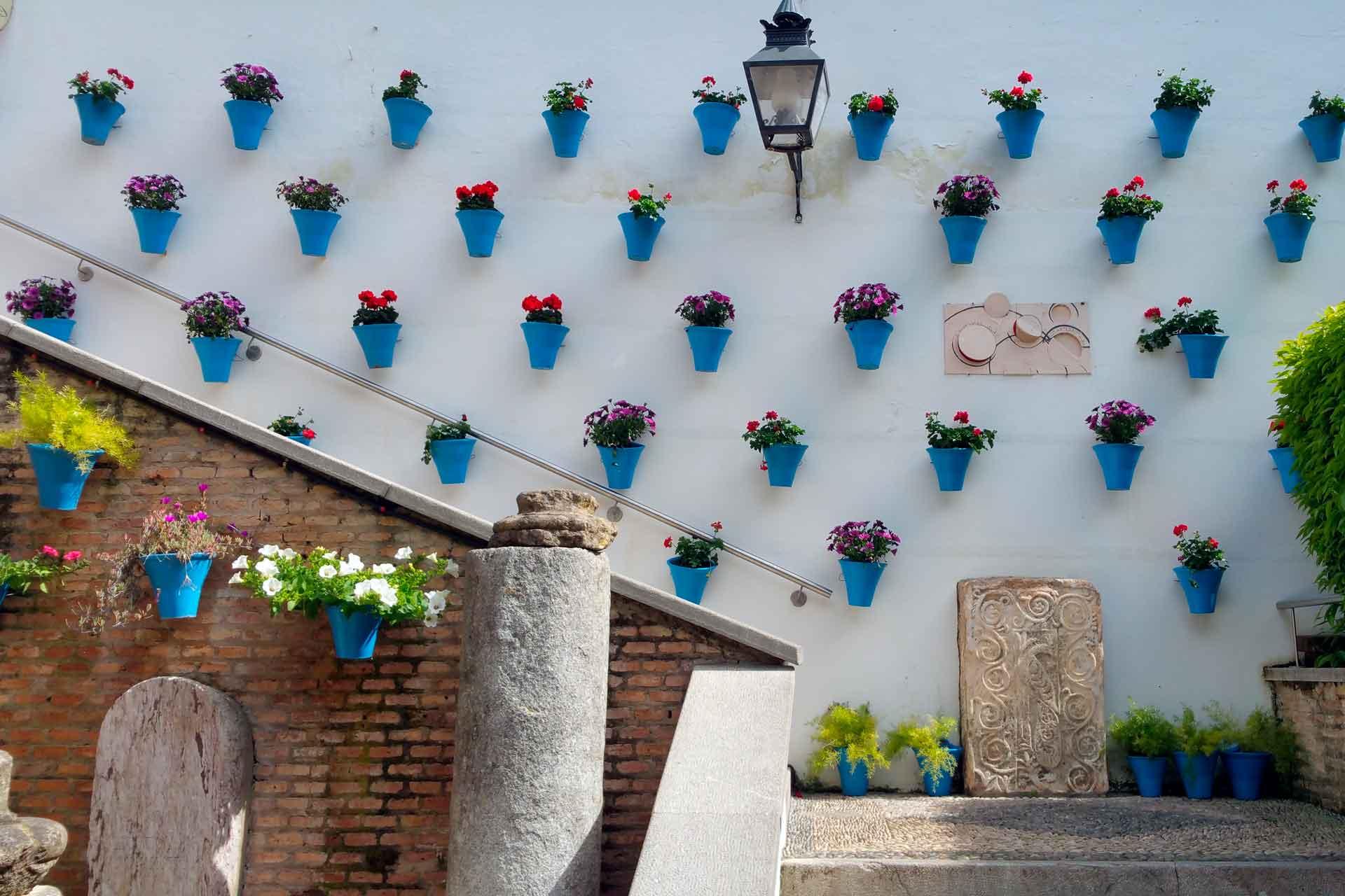 Patios de Córdoba | Courtyards of Córdoba | Patios de Cordoue